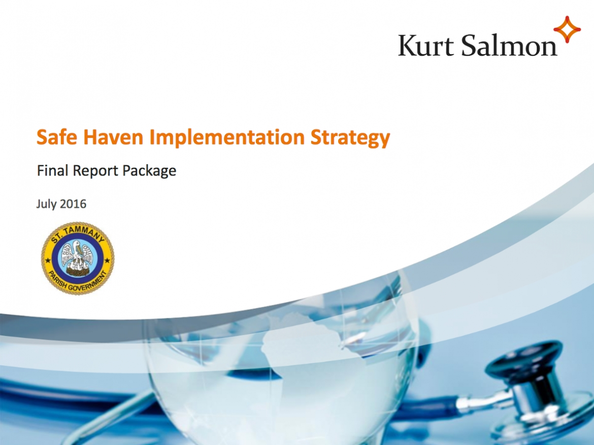 Read the Final Report on the Safe Haven Implementation Strategy.